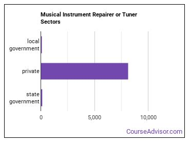 Musical Instrument Repairer or Tuner Sectors