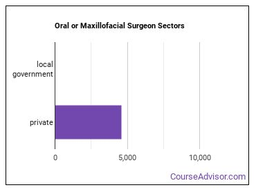 Oral or Maxillofacial Surgeon Sectors