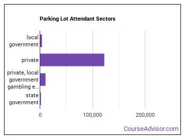 Parking Lot Attendant Sectors