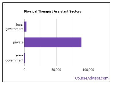 Physical Therapist Assistant Sectors