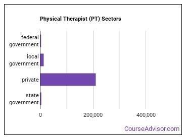 Physical Therapist (PT) Sectors