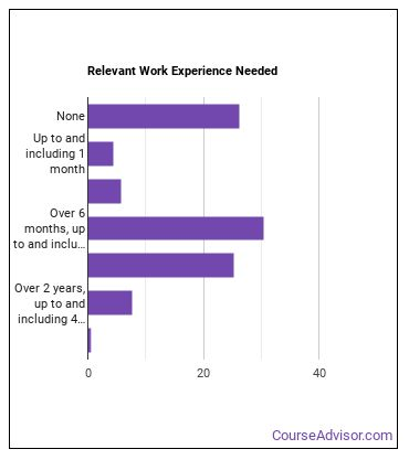 Physical Therapist (PT) Work Experience