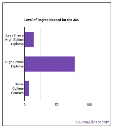 Postal Service Mail Carrier Degree Level