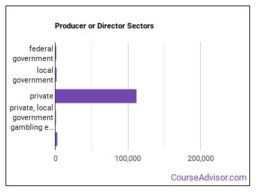 Producer or Director Sectors