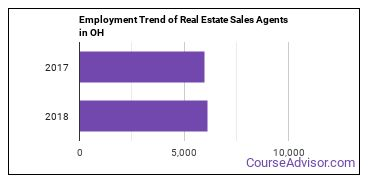 Real Estate Sales Agents in OH Employment Trend