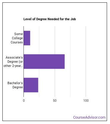 Registered Nurse (RN) Degree Level