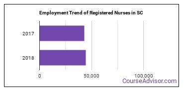 Registered Nurses in SC Employment Trend