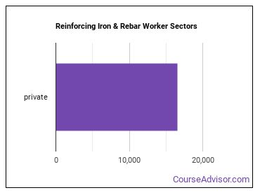 Reinforcing Iron & Rebar Worker Sectors