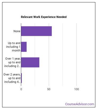 Residential Advisor Work Experience