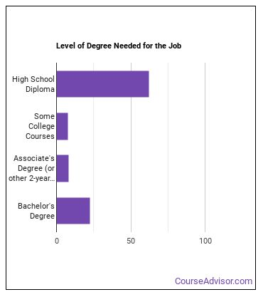 Financial Services Sales Agent Degree Level