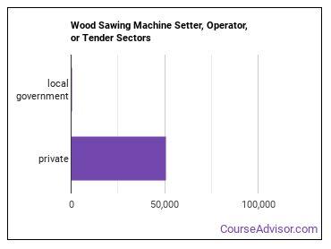 Wood Sawing Machine Setter, Operator, or Tender Sectors