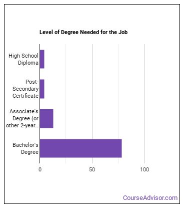 Search Marketing Strategist Degree Level
