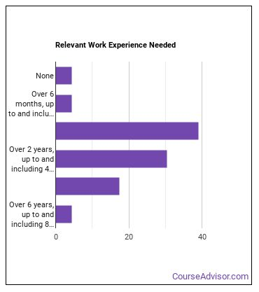 Search Marketing Strategist Work Experience