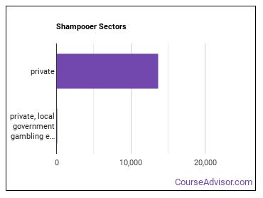 Shampooer Sectors