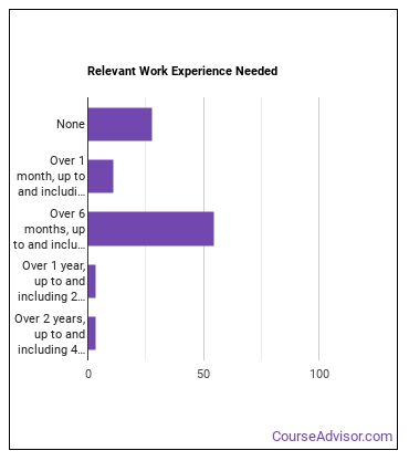 Shampooer Work Experience