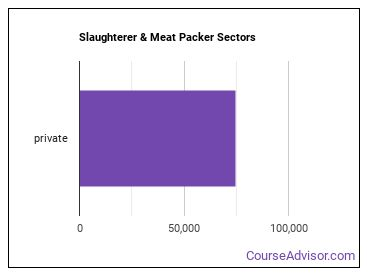 Slaughterer & Meat Packer Sectors