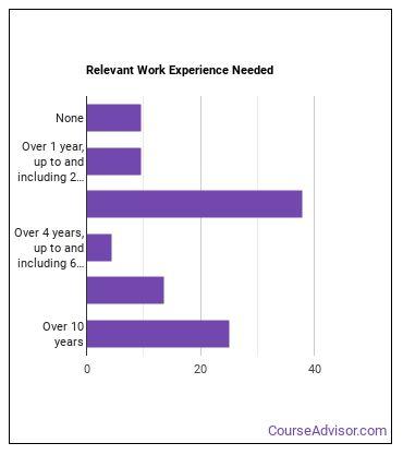 Social Work Professor Work Experience