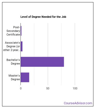 Software Applications Developer Degree Level