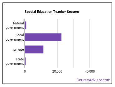 Special Education Teacher Sectors