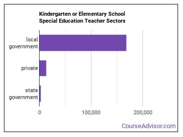 Kindergarten or Elementary School Special Education Teacher Sectors
