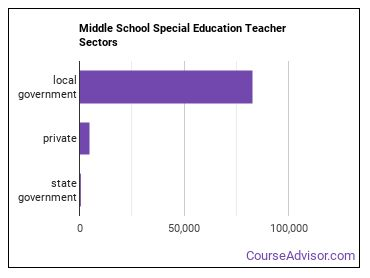 Middle School Special Education Teacher Sectors