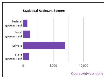 Statistical Assistant Sectors