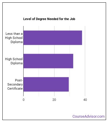 Stonemason Degree Level