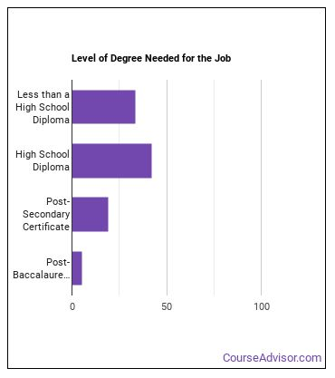 Structural Iron or Steel Worker Degree Level