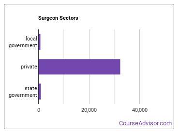 Surgeon Sectors