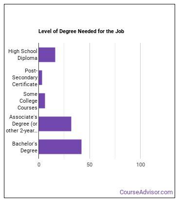 Surveyor Degree Level