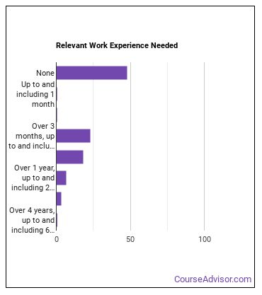 Team Assembler Work Experience