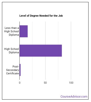 Transportation Attendant Degree Level