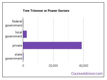 Tree Trimmer or Pruner Sectors