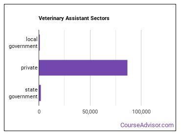 Veterinary Assistant Sectors