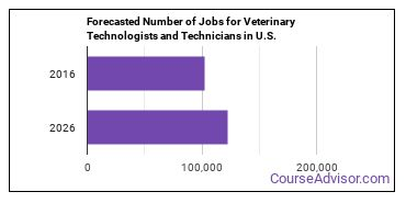 Forecasted Number of Jobs for Veterinary Technologists and Technicians in U.S.