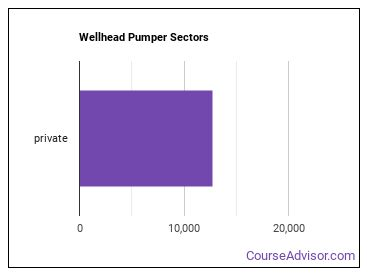 Wellhead Pumper Sectors