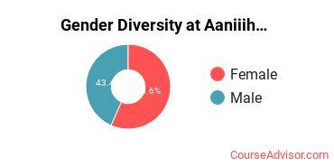 Gender Diversity at Aaniiih Nakoda College