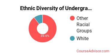 Aaniiih Nakoda College Student Ethnic Diversity Statistics