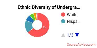 Abilene Christian University Student Ethnic Diversity Statistics