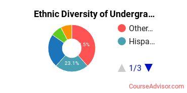 Abraham Lincoln University Student Ethnic Diversity Statistics