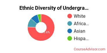 Academy College Student Ethnic Diversity Statistics