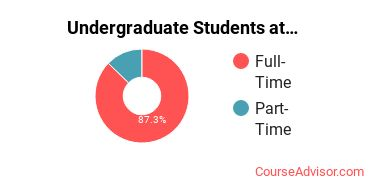Number of Undergraduate Students at Academy for Nursing and Health Occupations