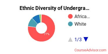 Academy for Nursing and Health Occupations Student Ethnic Diversity Statistics