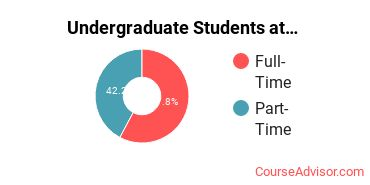 Number of Undergraduate Students at Academy of Art University