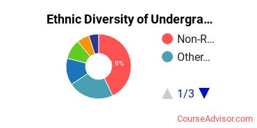 Academy of Art University Student Ethnic Diversity Statistics