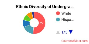 Adelphi University Student Ethnic Diversity Statistics
