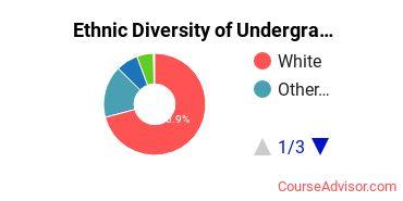 Adrian College Student Ethnic Diversity Statistics