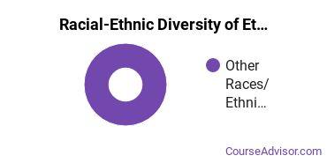 Racial-Ethnic Diversity of Ethnic Studies Majors at Aaniiih Nakoda College