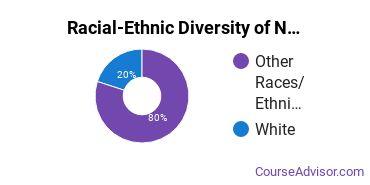 Racial-Ethnic Diversity of Nursing Majors at Aaniiih Nakoda College