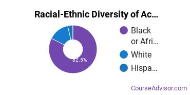 Racial-Ethnic Diversity of Academy for Careers and Technology Undergraduate Students